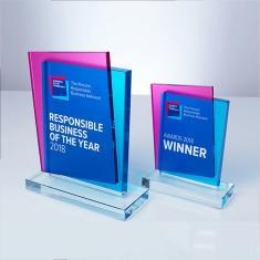 Business in the community - Glass Trophies and Awards